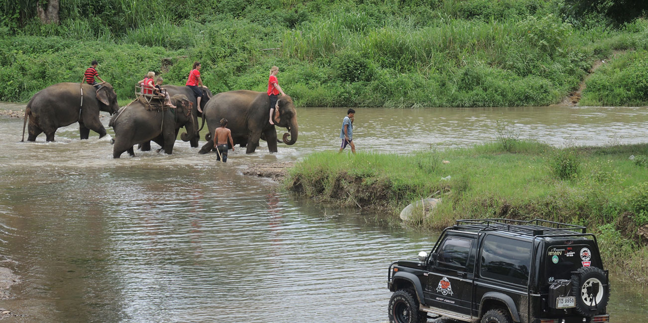 chiang_mai_elephants_4x4